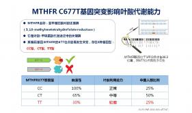H型高血压基因(叶酸利用能力基因)检测